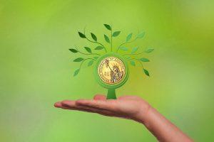 Gerentes mantienen negocios rentables con seguro de crédito Solunion